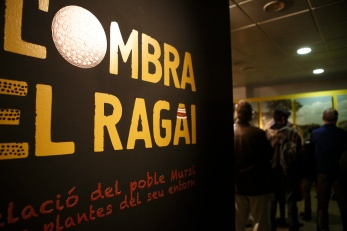 A L'ombra del Ragai (1) - Valencia 2014